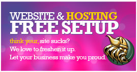How to find a good web host